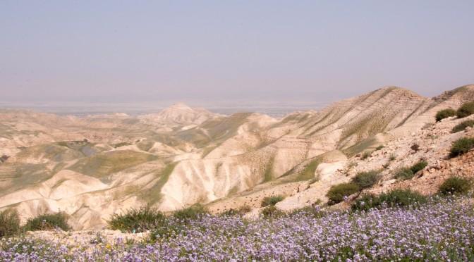 Die Wüste blüht – Purim, Ostern, Pessach und dazwischen wir