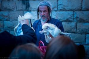 Anschließend werden die Tiere an Ort und Stelle geschächtet. Tierschützer in und außerhalb Israels kritisieren das ganze Prozedere.